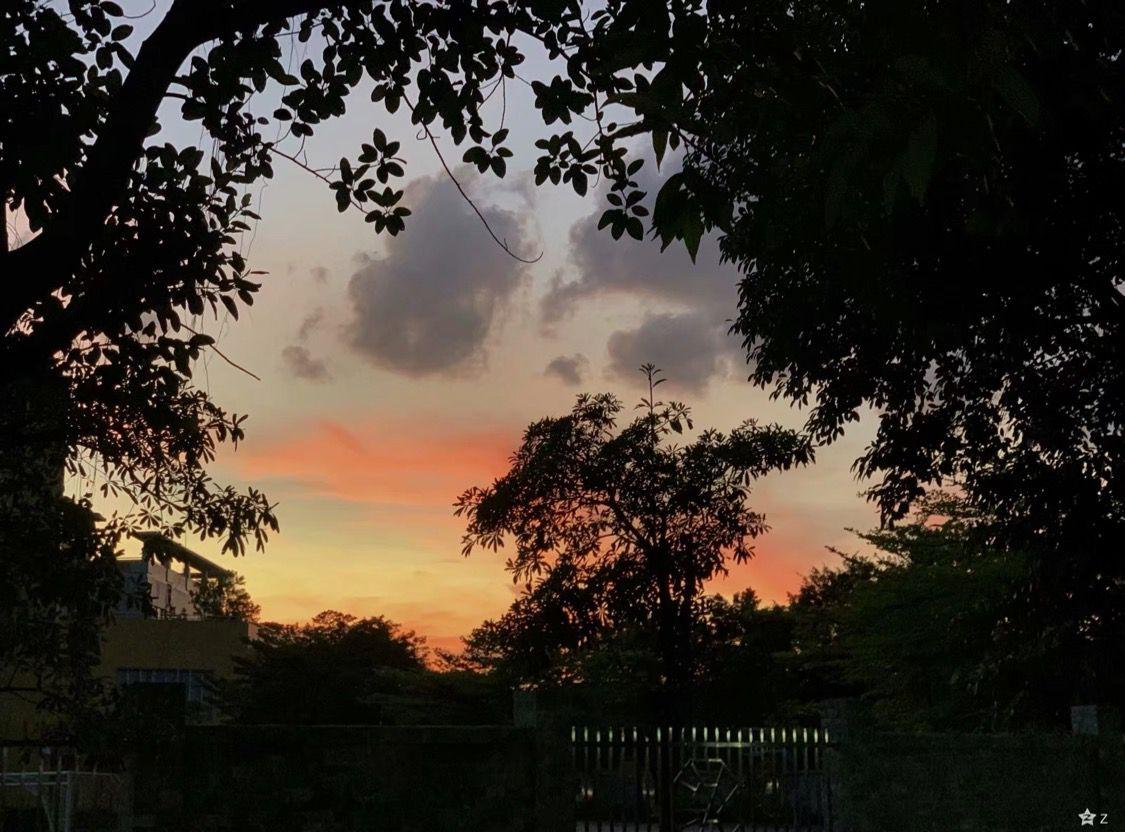 星期五的日落